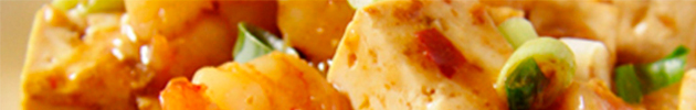 Tou-fu (queso de soja)