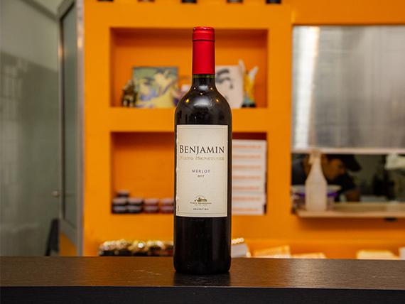 Vino Benjamín Nieto senetiner cabernet sauvignon 750 ml