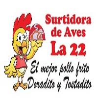 Surtidora de Aves La 22 Castilla