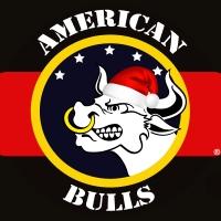 American Bulls