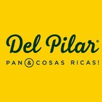 Del Pilar - Fuerza Aerea