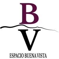 Espacio Buena Vista