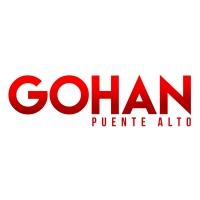 Gohan Puente Alto