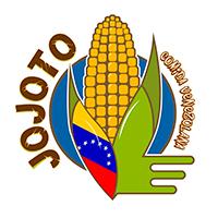 Jojoto Comida Venezolana