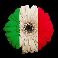 La Flor De Italia
