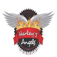 Harley's Angels Bogotá