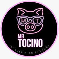 Mr Tocino Villamaria