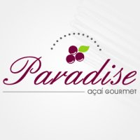 Paradise Açaí e Gelatos Artesanais