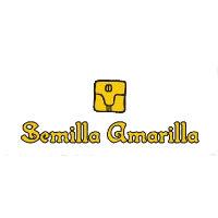 Semilla Amarilla