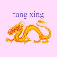 Tung Xing