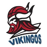 Vikingo's Pocitos