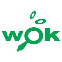 Wok Centro